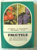 """FRUCTELE SI SANATATEA"",  Badescu si altii, 1984. Carte noua, Alta editura, M. Constantinescu"