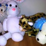 Set patru animalute de plus: girafa, iepuras, tigru, catelus - Jucarii plus