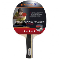 Paleta tenis masa 5 stele