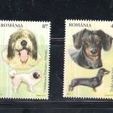 ROMANIA 2012- RASE DE CAINI - LP 1949 - Timbre Romania