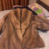 Haina de blana ( vulpe)