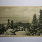 Romania Postavaru-Vedere spre poiana RPR