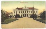 *carte postala(ilustrata)-TURNU SEVERIN-Palatul municipal