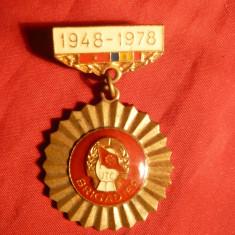 Insigna UTC - Brigadier -30 Ani de la infiintare