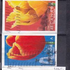 Lalele-Canada serie stampilată