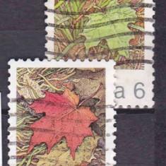 Frunze-Canada serie stampilată, Natura, America de Nord