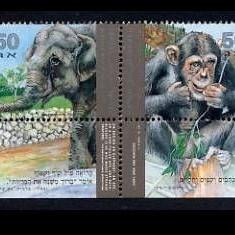 ISRAEL 1992 ANIMALE DE LA ZOO - Timbre straine