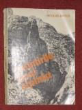 Amintirile unui alpinist - Niculae Baticu