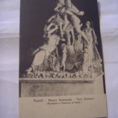 C.P.NAPOLI - Toro farnese ( Apollonio e Taurisco di Rodi )