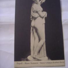 C.P.NAPOLI - Museo Nazionale - Venere callipige ( Scultura Greca )