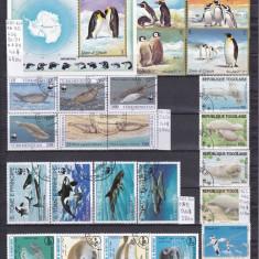 Faună marină-Colecţie mică cu serii complete şi coliţe, în total 41 timbre, preţ excepţional, Natura, Alta