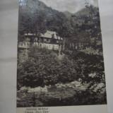 C.P.MASIVUL RETEZAT -  Cabana ,,Gura Zlata''