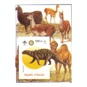 COLITA ANIMALE SOMALIA 2005  9