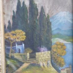 Pictura ulei: Peisaj Elvetia ( Pictor semnatura indescifrabila) 67cm / 50cm - (rama veche) - Pictor strain