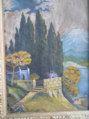 Pictura ulei: Peisaj Elvetia ( Pictor semnatura indescifrabila) 67cm / 50cm - (rama veche) foto