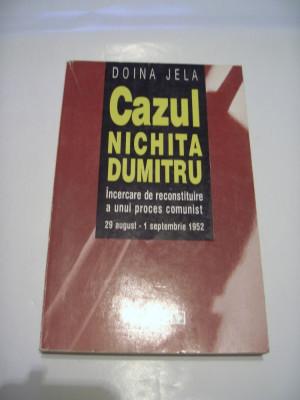 DOINA JELA - CAZUL NICHITA DUMITRU ~ incercare de reconstituire a unui proces foto