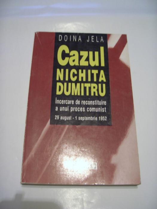 DOINA JELA - CAZUL NICHITA DUMITRU ~ incercare de reconstituire a unui proces
