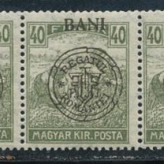 RFL 1919 ROMANIA Emisiunea Oradea seceratori 40 Bani streif de 7 sursarj oblic si cadru spart - Timbre Romania