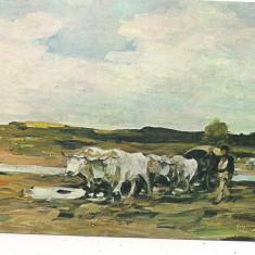 carte postala(ilustrata)-GRIGORESCU-car cu boi