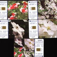 Set de 5 cartele telefonice romtelecom Flori puzzle, 2005
