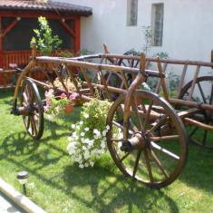 Car de boi - Goblen