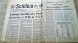 ziarul scanteia 6 octombrie 1982-sedinta comitetului politic executiv al PCR