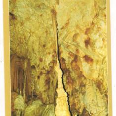 Carte postala(ilustrata)-PESTERA URSILOR-Bihor