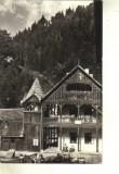 Bnk cp - Valea Vinului - vedere  - circulata