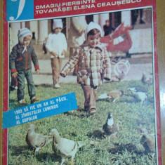 Revista femeia- ianuarie 1982 - Revista casa
