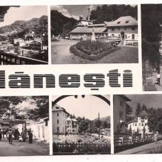 Carte postala(ilustrata)-OLANESTI-colaj - Carte Postala Oltenia dupa 1918, Circulata, Fotografie