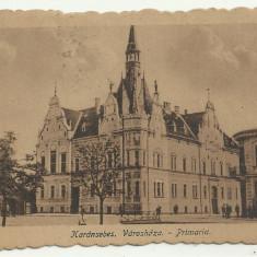 CARANSEBES : PRIMARIA - circulata 1922,timbre
