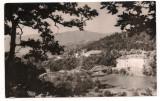 Carte postala(ilustrata)-CALIMANESTI-Pod peste Olt, Circulata, Fotografie