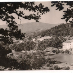 Carte postala(ilustrata)-CALIMANESTI-Pod peste Olt - Carte Postala Oltenia dupa 1918, Circulata, Fotografie