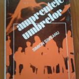 AMPRENTELE UMBRELOR - Simion Saveanu - Istorie