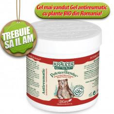 Puterea Ursului(250ml) Gel antireumatic cu plante BIO Krauter