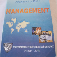MANAGEMENT-  ALEXANDRU PUIU