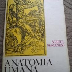 ANATOMIA UMANA IDEI FAPTE EVOLUTIE MIHAI IONESCU carte stiinta scrisul romanesc