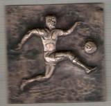 C262 Medalie (placheta) -FOTBAL -metaloplastie -marime circa61X61mm -aprox.24gr-starea care se vede
