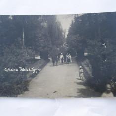 GRADINA PUBLICA-TG.-JIU - Carte Postala Oltenia 1904-1918