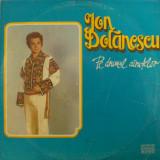 Disc vinil vinyl pick-up ELECTRECORD ION DOLANESCU Pe Drumul Carutelor MAX