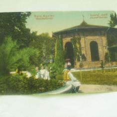 .BAIA BUZIAS IZVORUL JOSIF - Carte Postala Transilvania 1904-1918, Necirculata