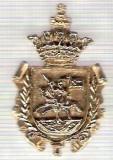 C306 Medalie(placheta) heraldica stema(emblema) zonala Spania -marime cca 32X24mm, gr aprox 9gr. -starea care se vede, mai buna ca scanarea
