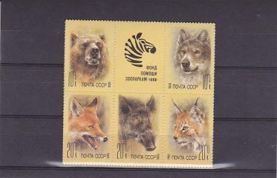 Fauna Zoo 1988   ,URSS. foto