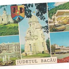 Carte postala(marca fixa)-BACAU-colaj - Carte Postala Moldova dupa 1918, Necirculata, Printata
