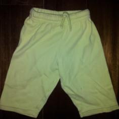 Pantaloni verzi din bumbac de la Prenatal, masura 62, copii 6 luni, ca noi, Culoare: Verde