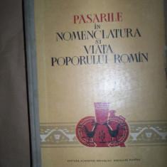 Pasarile in nomenclatura si viata poporului roman Mihai Bacescu