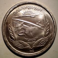 D.284 EGIPT FAO HIDROCENTRALA ASWAN POUND 1973 AUNC ARGINT 25g, Africa