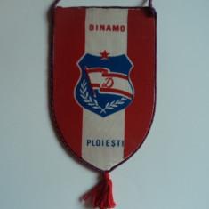FANION Dinamo Ploiesti