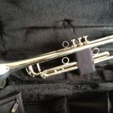 Trompeta Profesionala SiB Schagerl Austria