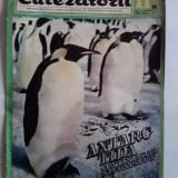 Revista Cutezatorii Nr.11/1969  / C15G